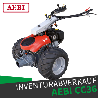 InvAbv AebiCC36